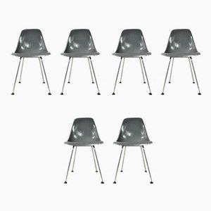 Fiberglass Dining Chairs from Stella Werke AG Bassecourt, 1960s, Set of 6