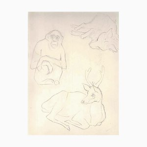 Bocetos de animales, años 10 - Ernest Rouart - Drawing