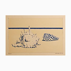 Seashells - Original Lithograph by Gino Guida - 1968 1968