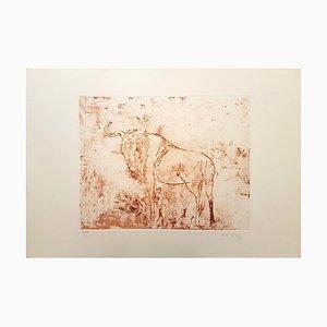 Aguafuerte Buffalo original de Aldo Pagliacci - 1971 1971