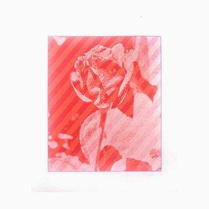 Rose - Original Screen Print by Costantino Persiani - 1973 1973