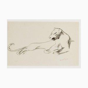 Liegende Löwin - Original Zeichnung von Ernest Rouart - 1890er 1890er