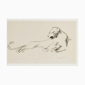 Lying Lioness - Original Drawing by Ernest Rouart - 1890s 1890s