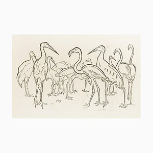 Storks and Flamingos - Original Woodcut by Unknown French Artist Early 1900