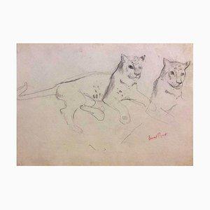 Coppia di ghepardi - Disegno originale a matita di Ernest Rouart - inizio 1900 inizio XX secolo