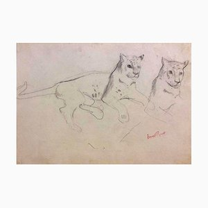 Couple of Cheetahs - Original Pencil Drawing by Ernest Rouart - Early 1900 Early 1900
