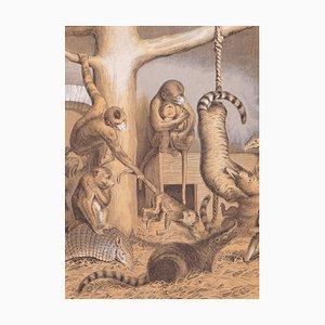 Eine Gruppe Affen - Original Lithographie - 1866 1866