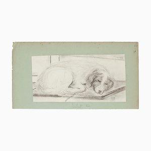 Schlafender Hund - Bleistiftzeichnung auf Papier - Spätes 19. Jh. Ende 19. Jh