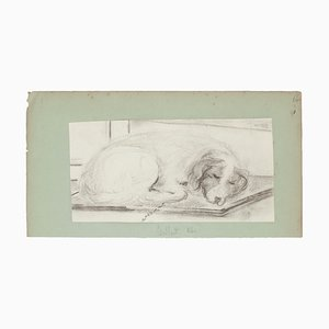 Sleeping Dog - Pencil Drawing on Paper - Late 19th Century Late 19th Century