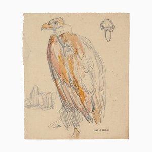 Dibujo Vulture - Lápiz y pastel de Jane Le Soudier - Mid-Century Mid-Century, siglo XX