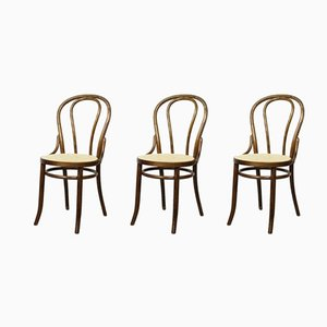 No. 18 Brown Chairs by Michael Thonet, Set of 3