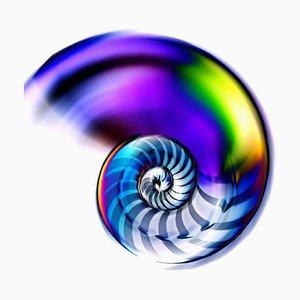 Nautilus # 1 - Original Foto von Edoardo Montaina - 2010er 2010er