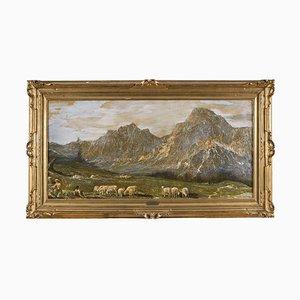Landscape Mountains with Pasture - Huile sur Toile par G. Federici - Début 20ème Siècle Début 20ème Siècle