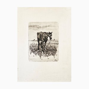 The Old Horse - Original Etching by Giovanni Fattori - 1900-1908 ca. 1900-1908