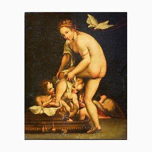 The Bath of Venus - Öl auf Leinwand von Anonymous Artist Northern School 1800 19. Jahrhundert