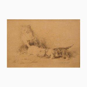 Three Little Cats - Original China Tuschezeichnung von L.-E- Lambert - 1890 ca. 1890 ca