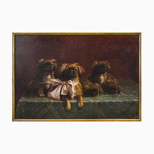 Pekingese Family of Dogs - Oil on Canvas by F.V. Rossi - 1939 1939