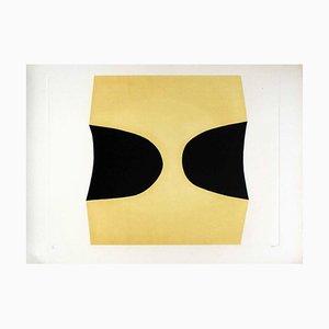 Bianchi e Neri I (Acetates) - Plate C - Alberto Burri - 1969 1969