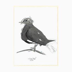 Encre et Gouache The Dove par Giacomo Manzù - 1972 1972