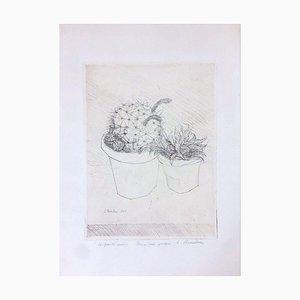 Gravure à l'Eau-Forte Le Piante Grasse par Luigi Bartolini - 1949 1949
