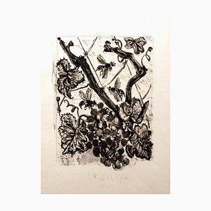 Von '' Buffon '' - Le Singe - Original Radierung von P. Picasso - 1941/42 1941-1942