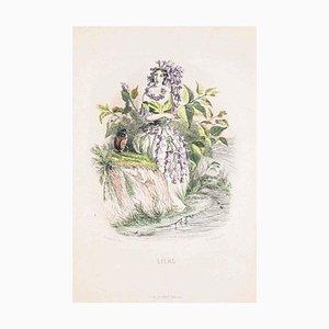 Lilas - Les Fleurs Animées Vol.II - Lithograph by J.J. Grandville - 1847 1847