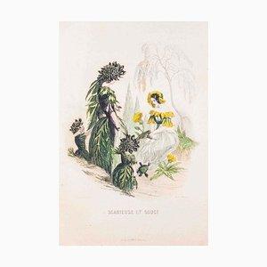 Scabieuse et Souci - Les Fleurs Animées Vol.II - Litho von JJ Grandville - 1847 1847
