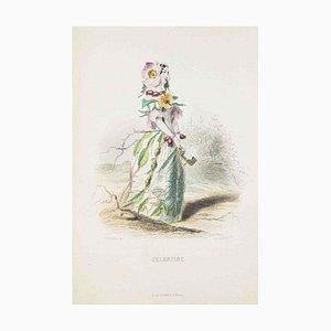 Eglantine - Les Fleurs Animées Vol.I - Litho von JJ Grandville - 1847 1847