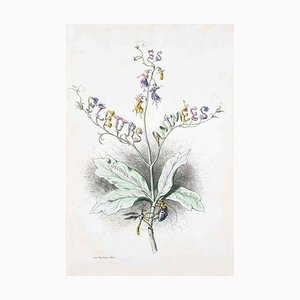 Frontespizio - Les Fleurs Animées Vol.II - Litografia di JJ Grandville - 1847 1847