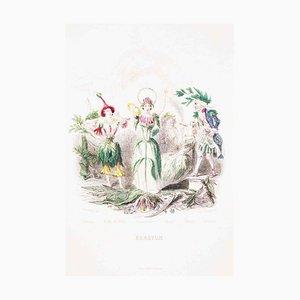 Erratum - Les Fleurs Animées Vol.II - Lithographie von JJ Grandville - 1847 1847