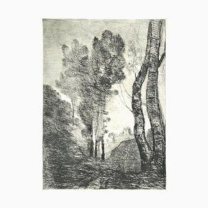 Trees - Original Etching - Late 19th Century Late 19th Century