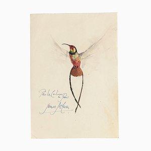 Bird - Verschiedene Medien - James McEwen - 20. Jahrhundert
