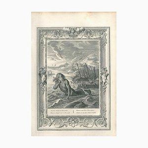 Glaucus, from '' Le Temple des Muses '' - Original Radierung von B. Picart - 1742 1742