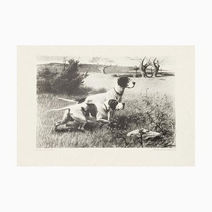 Dogs - Set of Five Lithographs realized by Eugenio Cecconi - 1980 1980s