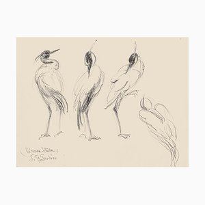 Birds - Original Pen on Paper by Jeanne le Soudiere - 20th century 20th century