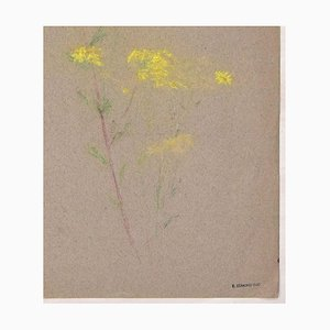 Mimosa Flower - Colored Pastel on fabric by E.-E. Duc - Late 19th Century Late 19th Century