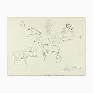 Studium der Tiere - Original Bleistiftzeichnung von Willy Lorenz - 1940er 1940er