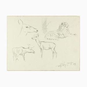 Study of Animals - Dessin au Plume Original par Willy Lorenz - 1940s 1940s