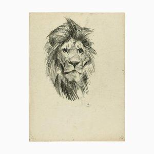 Cabeza de león y tigre - Dibujo original a lápiz de Willy Lorenz - años 50