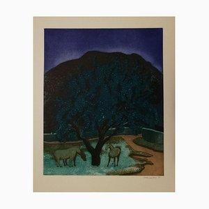 Verzauberter Wald - 1997 - Ferdinand Finne - Aquatinta - Contemporary 1997