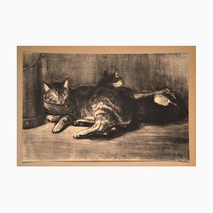Cats - From Chats et Autres Bêtes - Original Lithograph 1933 1933