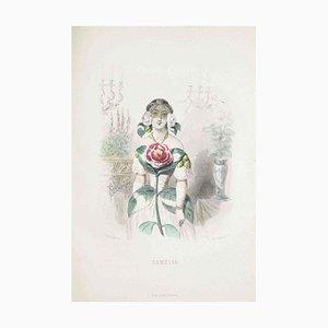 Camelia - Les Fleurs Animées Vol.I - Litho by J.J. Grandville - 1847 1847