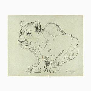 Hockende Löwin und Kaninchen - Original Bleistiftzeichnung von Willy Lorenz - 1971 1971