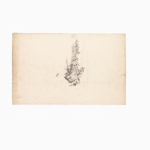 Sole Tree - Original Drawing in Pencil on Paper - 20th Century 20th century