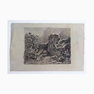 Landscape - Original Lithograph - 20th Century 20th century
