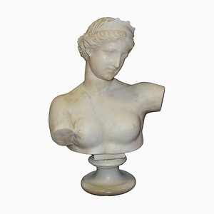 Ancient Marble Bust of Aphrodite - Italy - 19th Century 19th Century