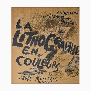 La Lithographie en Couleurs 1898