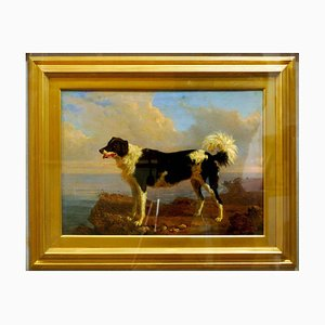 Dog - Oil on Canvas by Filippo Palizzi - Second Half of 19th Century 1950-1860