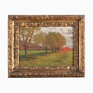 Landscape with Trees - Oil on Cardboard by Alberto Zardo Early 20th Century
