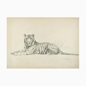 Tiger - Original Bleistift Zeichnung von Willy Lorenz - Mid 20th Century Mid 20th Century